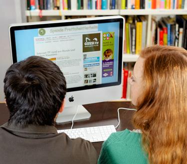 Online-Werbung, z. B. auf gassi-tv.de